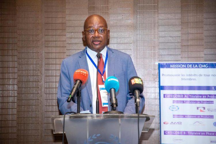AG de la Chambre des mines de Guinée: malgré la Covid, 61% d'activités réalisées durant l'exercice 2020